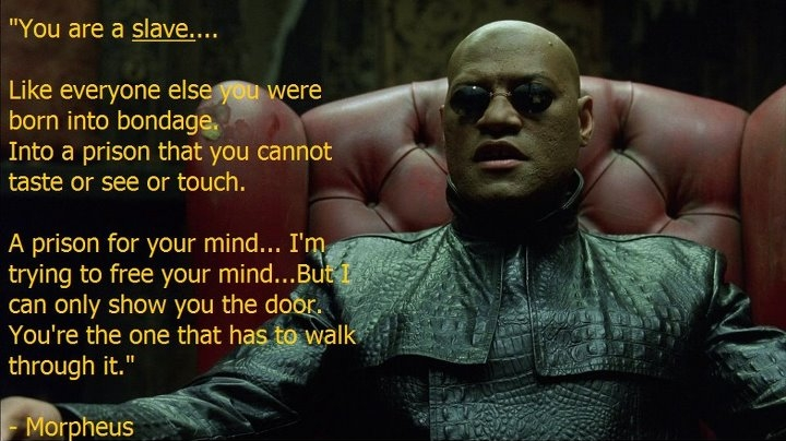 morpheus-you-are-a-slave-like-everyone-else-you-were-born-into-bondage-into-a-prison-that-you-cannot-taste-or-see-or-touch-a-prison-for-your-mind-im-trying